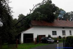Výjezd jednotky - spadlý strom